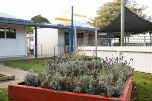 Junior Garden 3